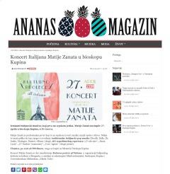 1204 - ananasmag.com - Koncert Italijana Matije Zanata u bioskopu Kupina